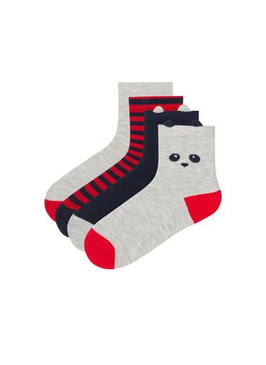 Penti Erkek Çocuk Mini 4Lü Babet Çorabı Renkli